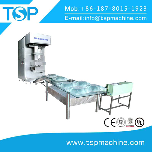 5l sachet filling and sealing machine